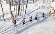 Walks, snow shoe walks and Nordic walking